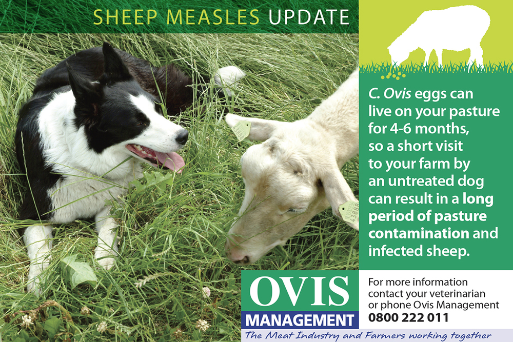 Ovis advert 150x100_2.jpg