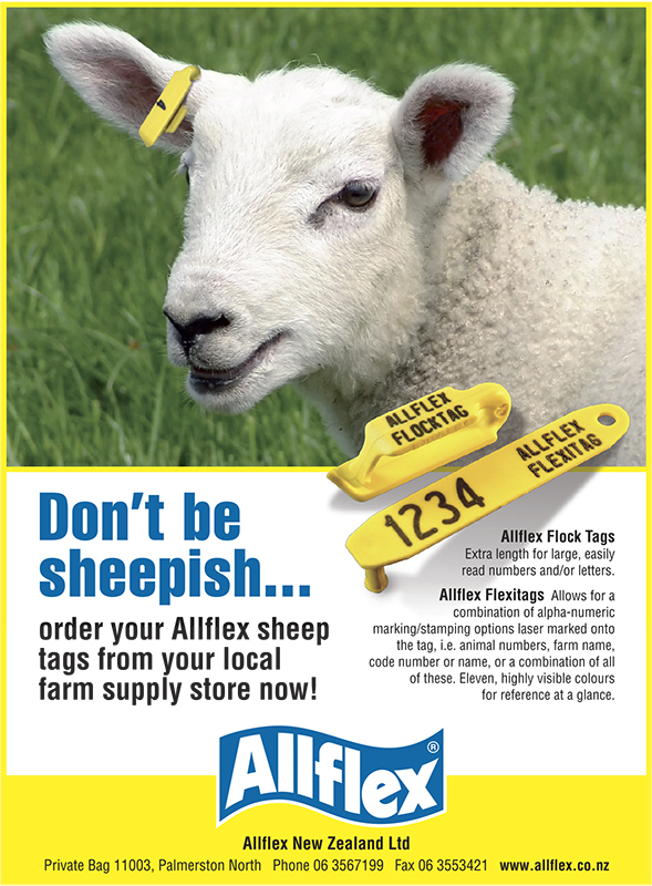 Allflex Sheep adv 150x110.jpg
