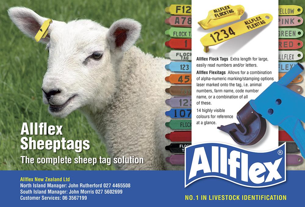 Allflex Sheep adv 180x265 flat.jpg