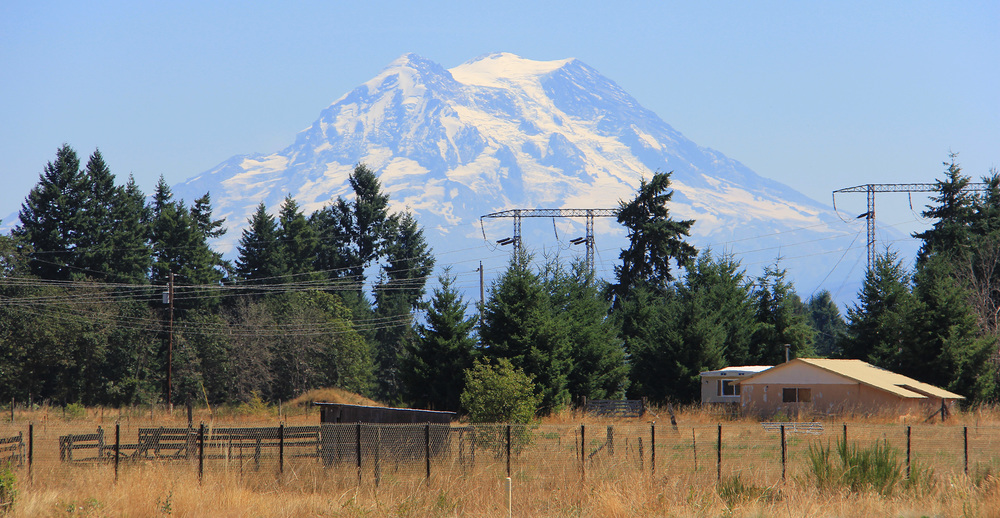 I took this photo standing in the middle of a roundabout in Yelm, WA. They call a roundabout a ROTARY here.