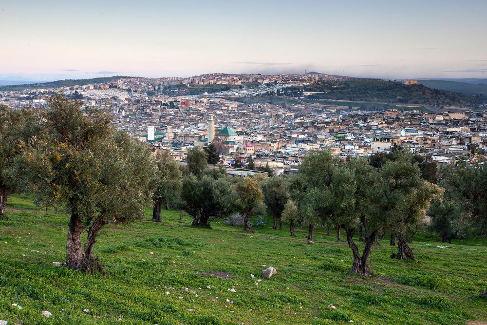 Fez_City_4.jpg