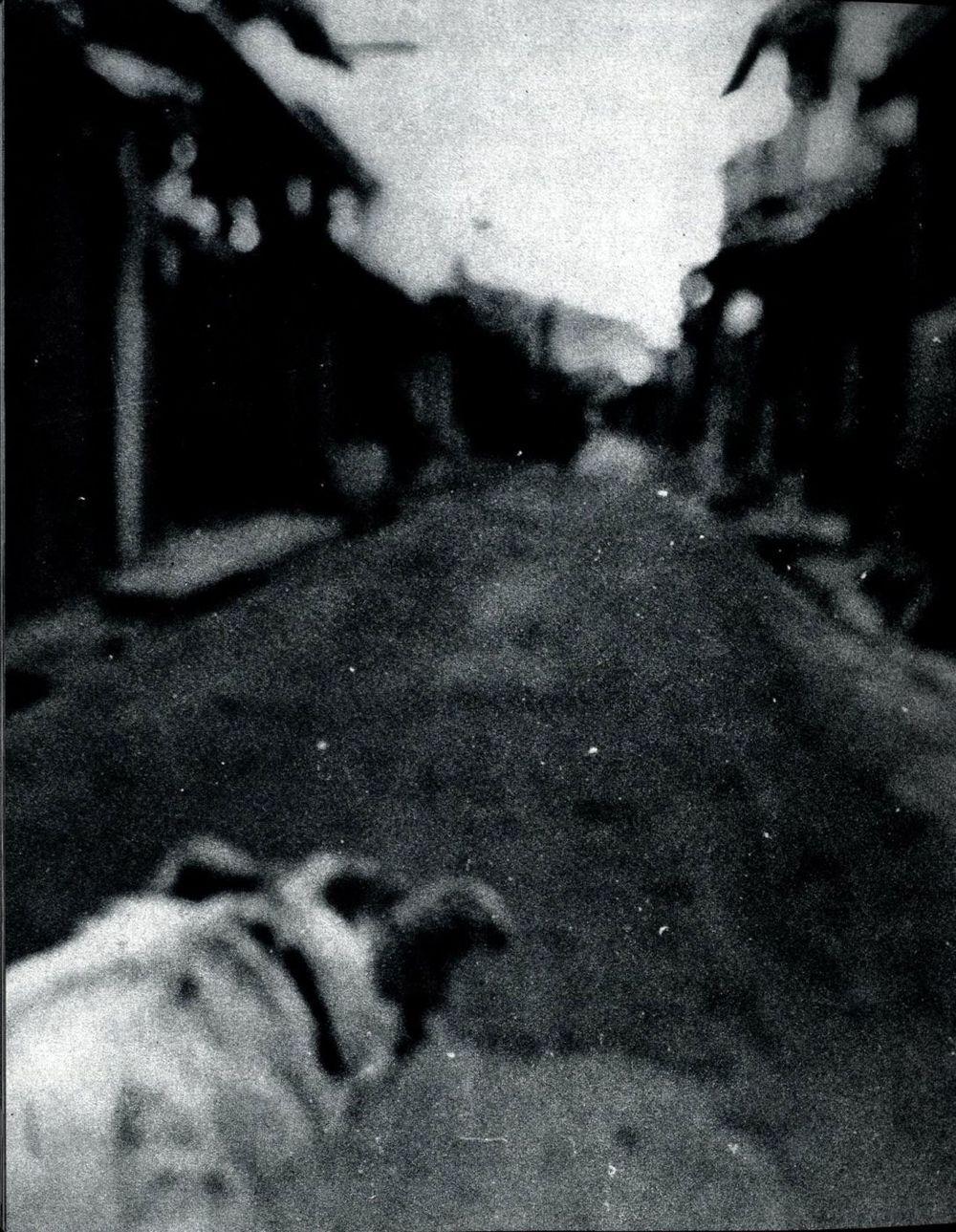 Daido Moriyama: Shashin yo sayonara (Bye, bye photography, dear)