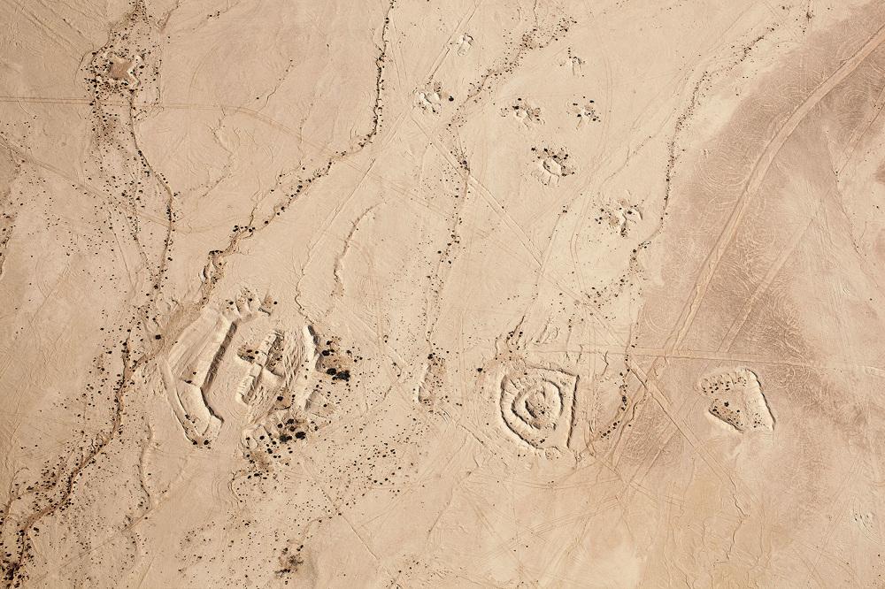 Fazal Sheikh, Desert Bloom