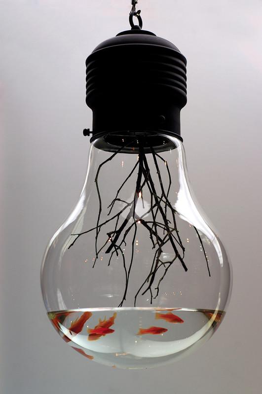 MyeongBeom Kim,  Edison, 2004    Ampoule, poissons, eau, technique mixte — 38 ×38 ×76 cm —Pièce unique