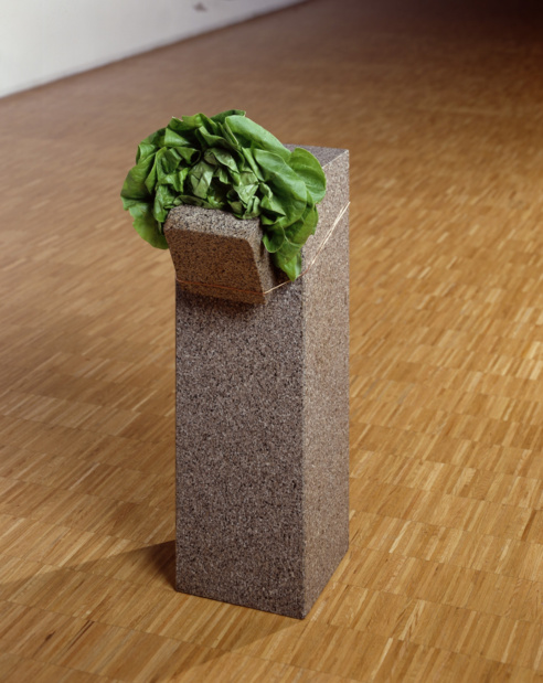 Giovanni Anselmo ,   Sans titre  , 1968 Granit, laitue, fil de cuivre —70 ×23 ×37 cm Collection Centre Pompidou, Musée national d'art moderne, Paris © Centre Pompidou/Dist. RMN-GP © Giovanni Anselmo
