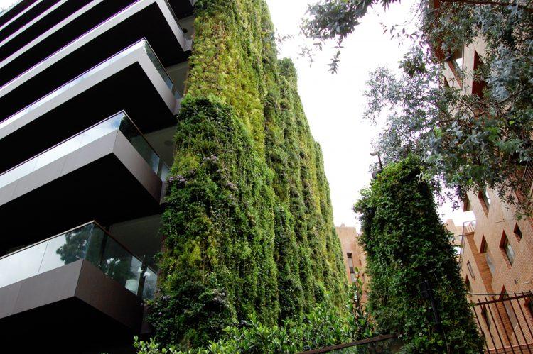 un-immeuble-de-Bogota-est-le-plus-grand-jardin-vertical-du-monde-2.jpg