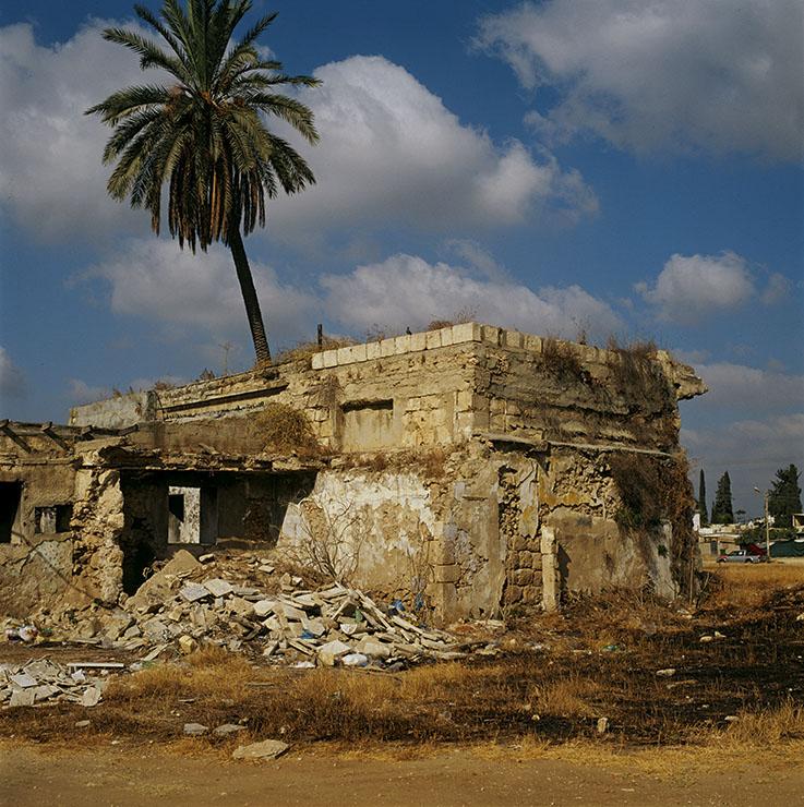 Didier Ben Loulou, SUD-  La maison en ruine et son palmier,  Lod, Israël, 2015