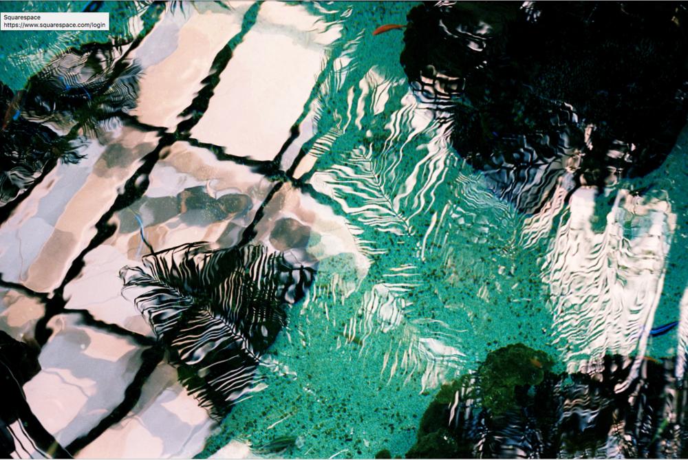 Capture+d%27e%CC%81cran+2019-02-27+10.32.10 ELSA & JOHANNA, ROSARIUM. ART PHOTOGRAPHIE