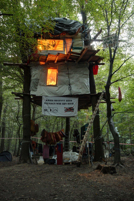 Habitat et forêt en lutte, actualité d'un combat obsédant -