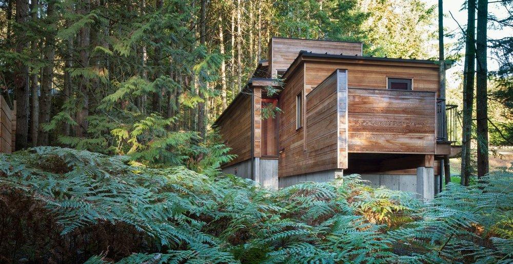 Architecture - Maisons avec vue sur la nature et grâce à elle -