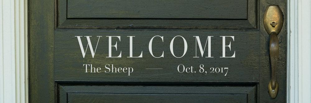 5. Welcome Series_Weekly Banner Sheep.jpg
