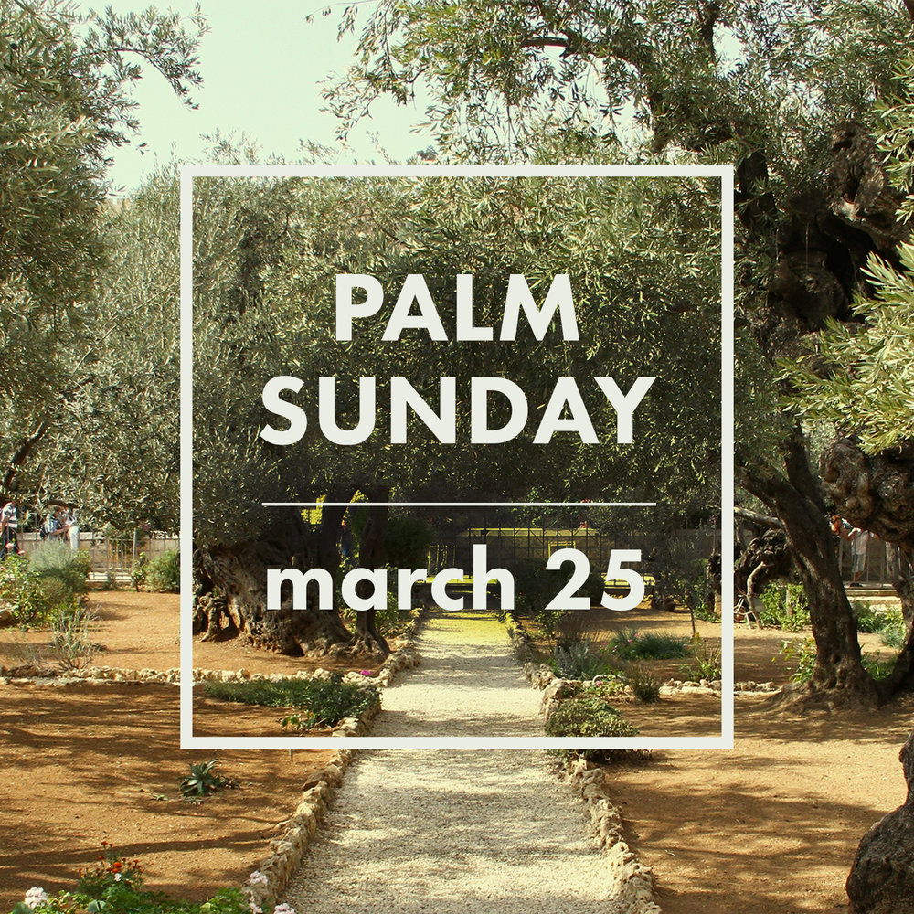 Holy Week_Palm Sunday.jpg