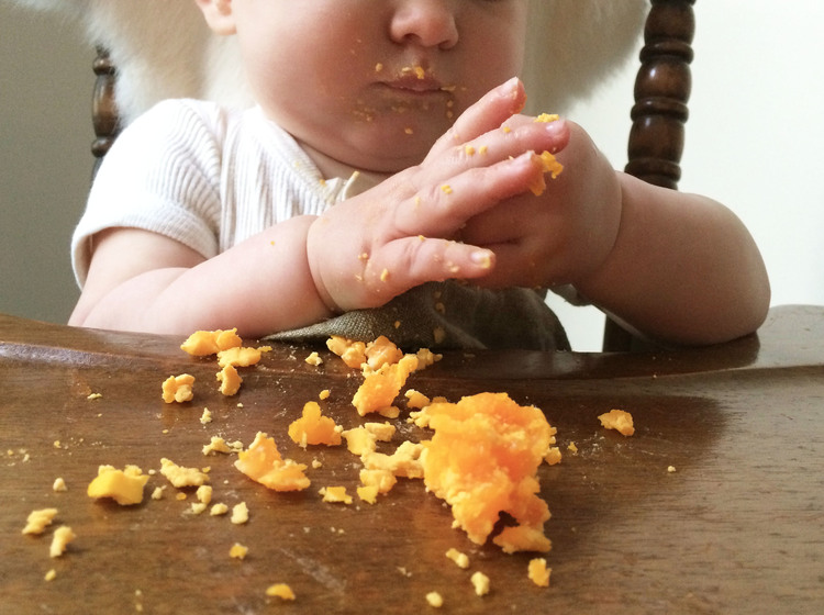 Egg yolks for babies oh baby nutrition while i believe in eating whole foods i prefer to feed younger babies egg yolks only their stomachs are small so whatever food they eat should be as forumfinder Gallery