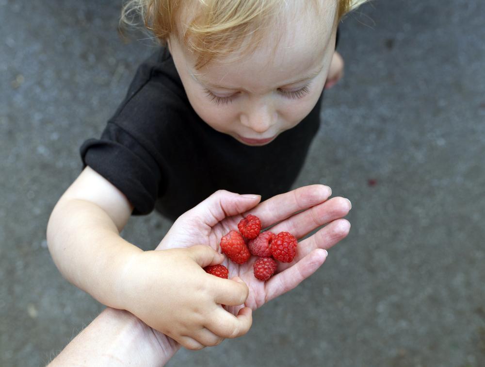 raspberry-chia-seed-jam