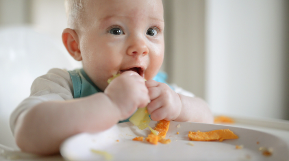 baby product starting solids
