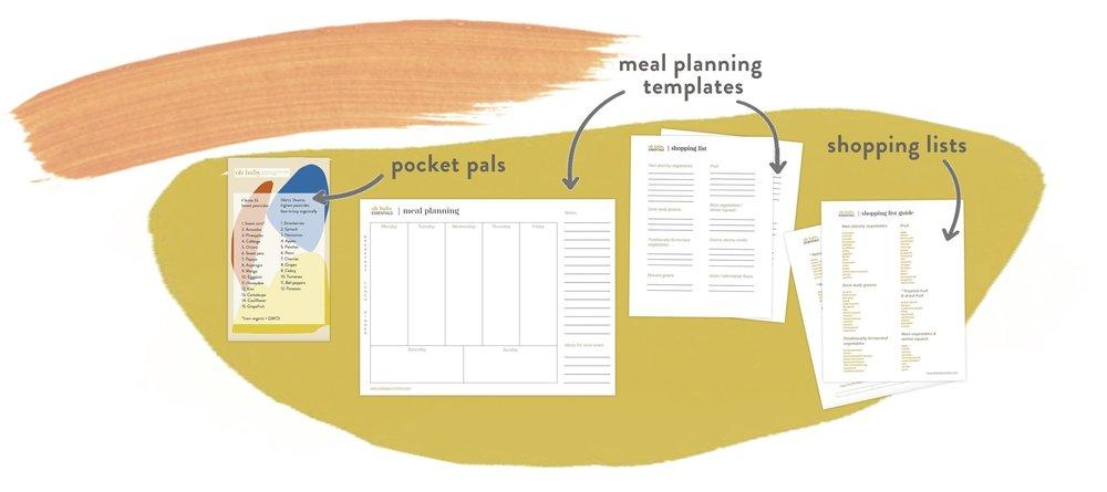 obe templates.jpg