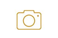 phtoto yellow.jpg