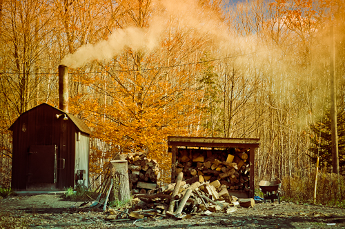 Jay McIntyre Photography Woodshed