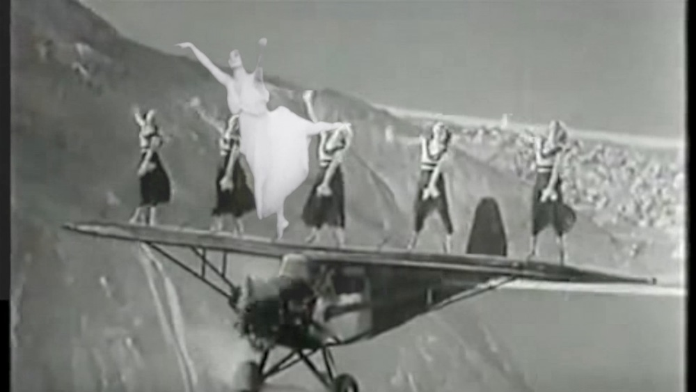 The Sun Palace pavlova plane.jpg