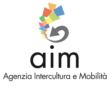 aim1.jpeg