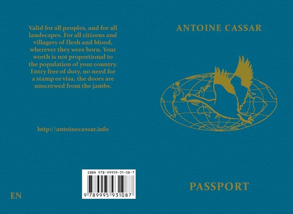 passport blue cover.jpg