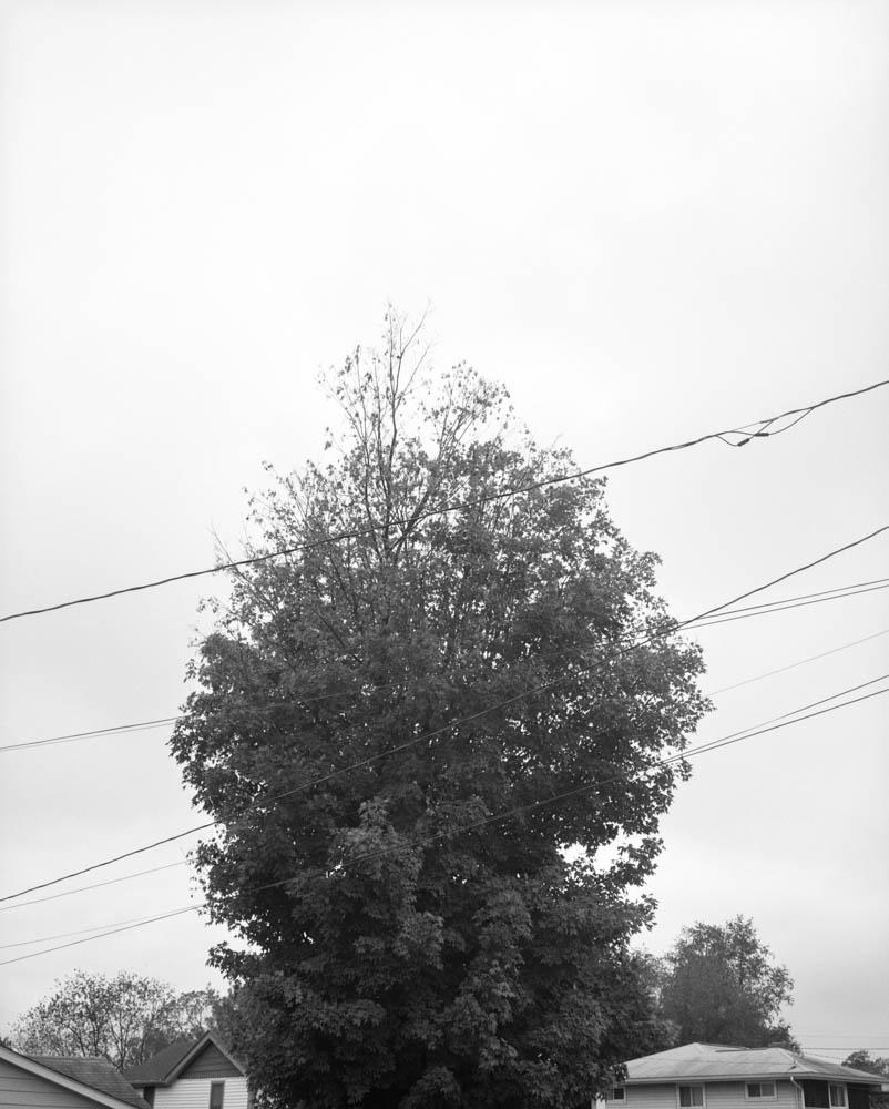 17_tim-60s.jpg