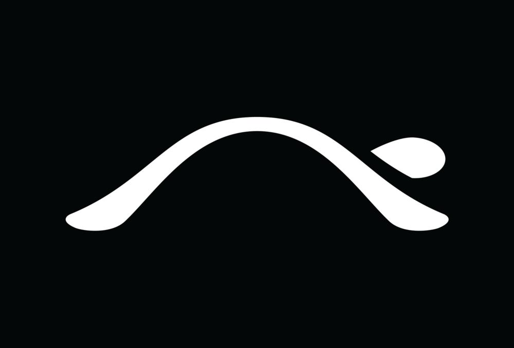 turtl logo.png