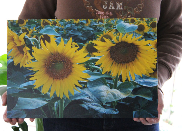 SUNFLOWER PRINTS