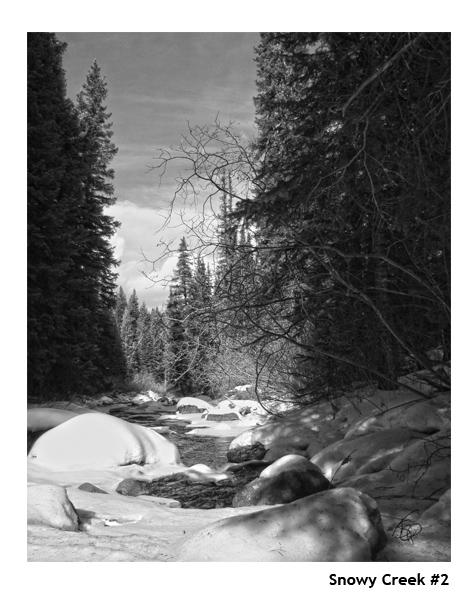 snowycreek2 b&w_web.jpg