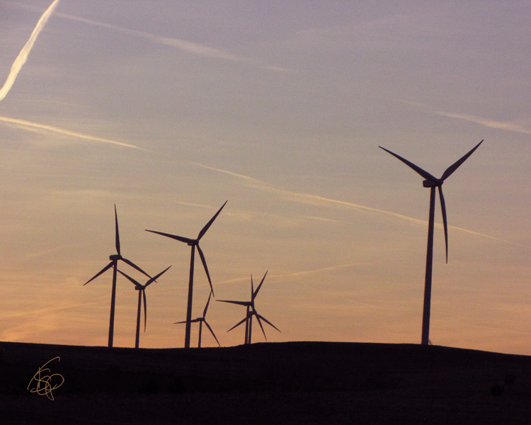 WindTurbines001_Nov2012_web.jpg