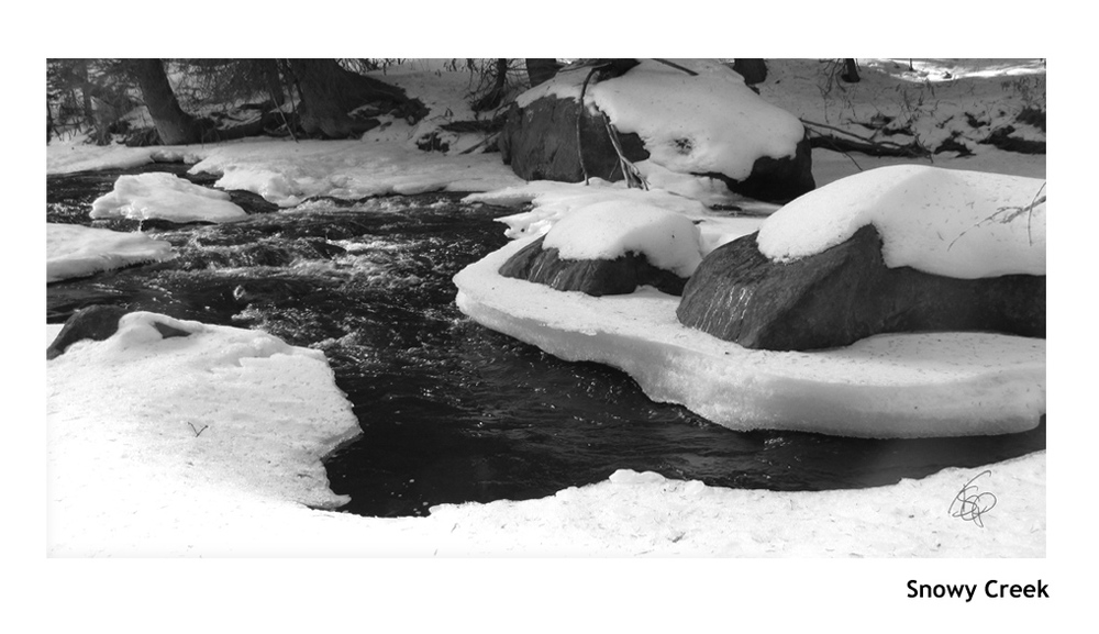 Snowy Creek_WEB.jpg