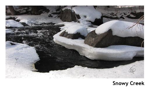 Snowy CreekCOLOR_WEB.jpg
