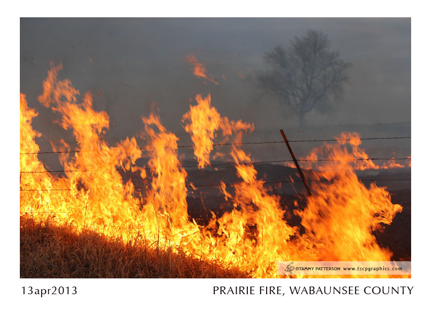 PRAIRIE FIRE_13apr2013web.jpg