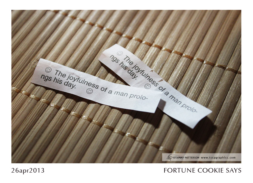 FORTUNE COOKIE_26apr2013web.jpg