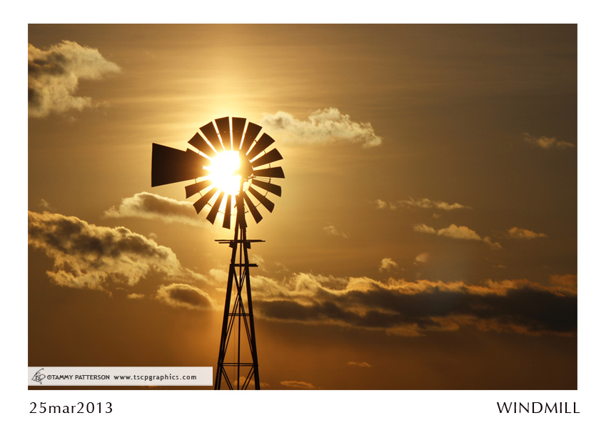 WINDMILL_25mar2013web.jpg