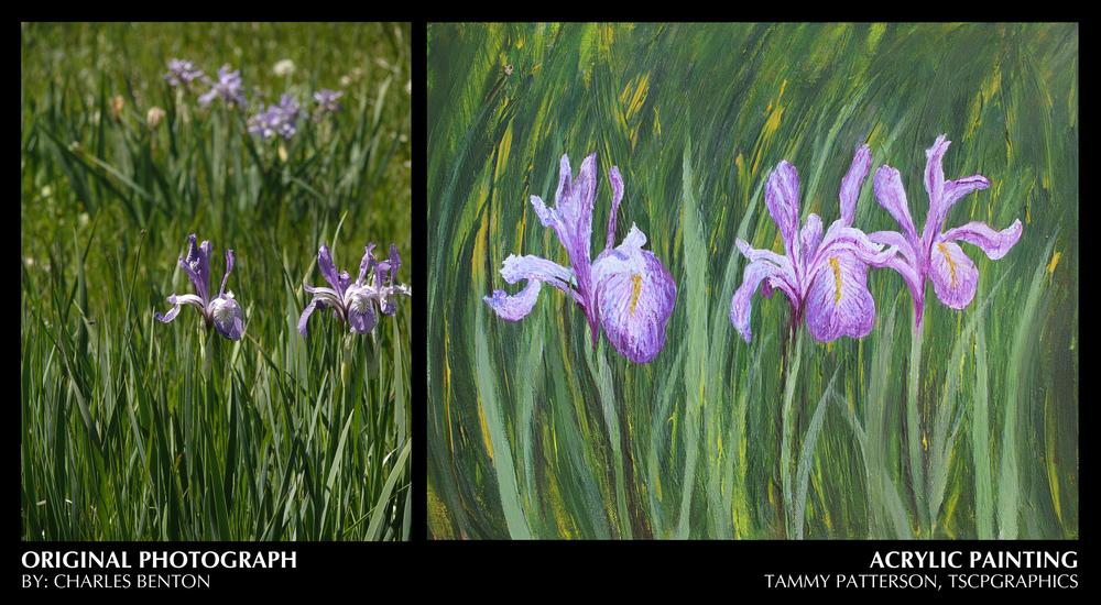 Iris photot-painting.jpg
