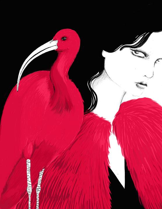 Mad Bird - Scarlet Ibis(LOW res).jpg