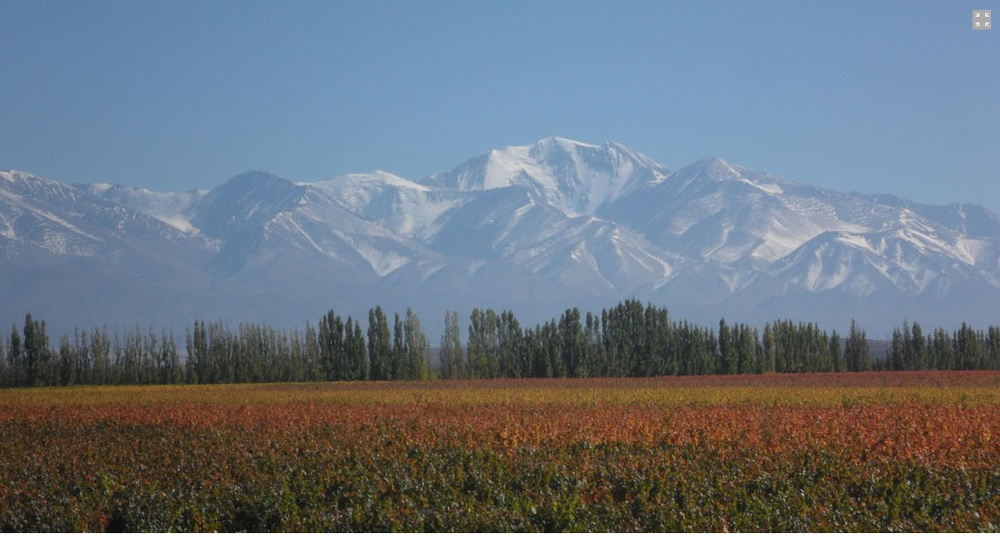 Así se veía el paisaje en la bodega Riglos en el otoño de 2013, mientras los frutos esperan su momento para brotar.