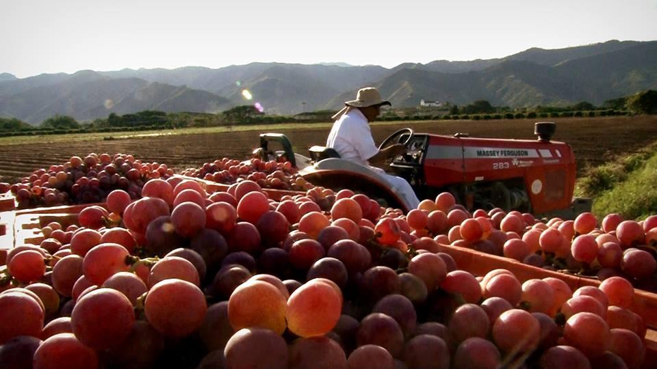 Foto tomada de www.parquenacionaldelauva.com/