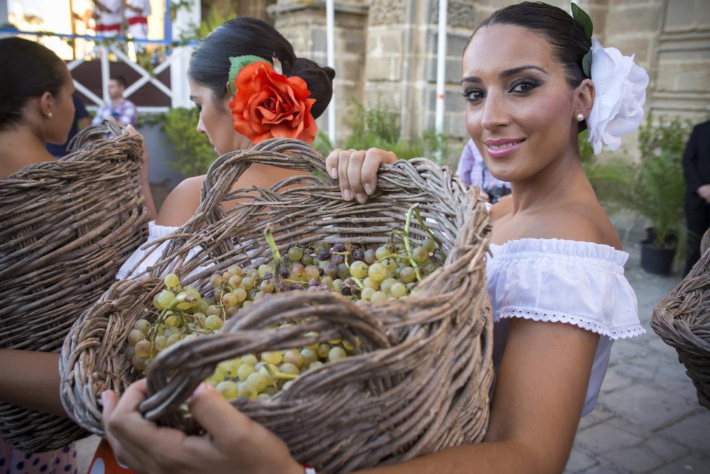 Fiestas del vino