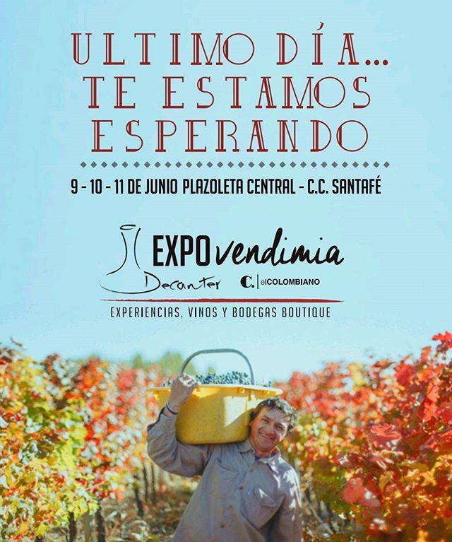 Ven y disfruta los mejores vinos boutique de nuestro club de vinos Decanter. Te estamos esperando!!! #clubdevinosdecanter #vinos #expo #decantercolombia