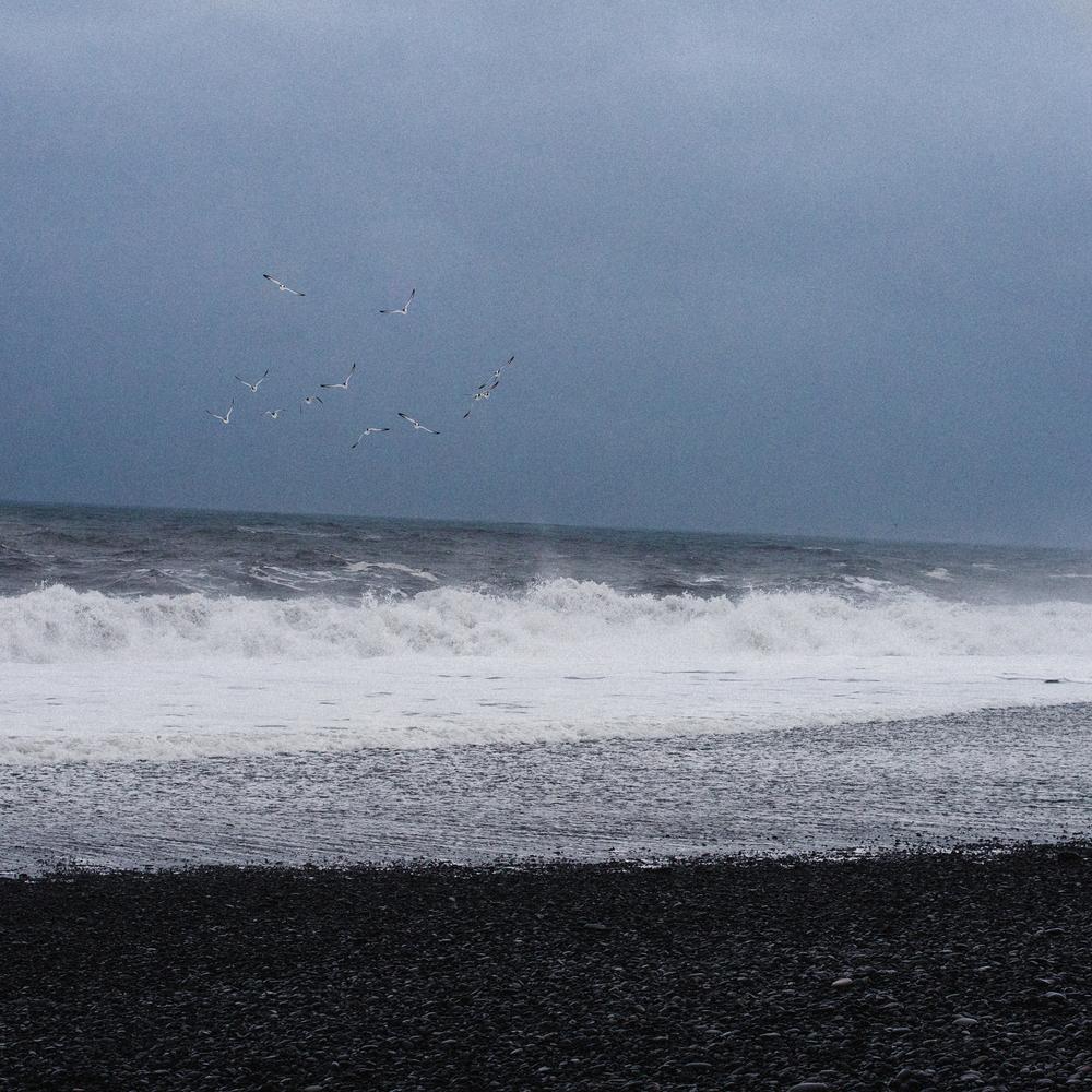 Nikon Iceland-22.jpg