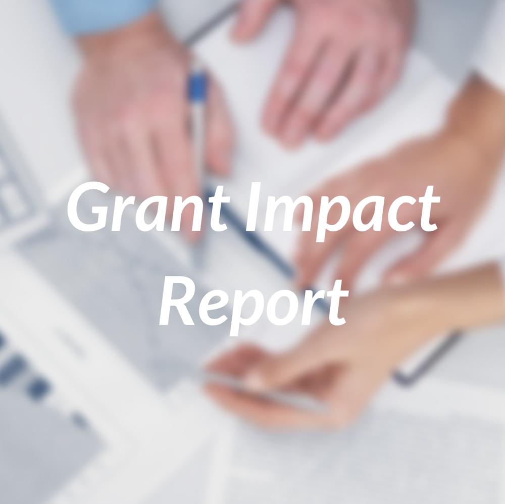 Grant Impact Report