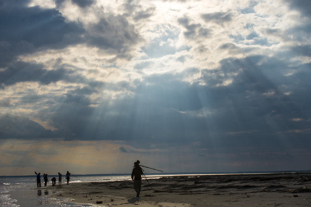 Bird Researchers walk along the coastline of Little Tybee as they return to their boats after observing Red Knots during a break in their migration north on the islands off the Georgia coast.