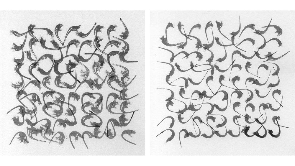 Pressed Splines , Seeds 56 and 258