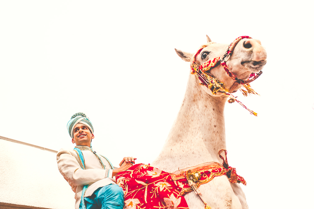 Baraat Indian Wedding Crow Canyon Golf Country Club Danville
