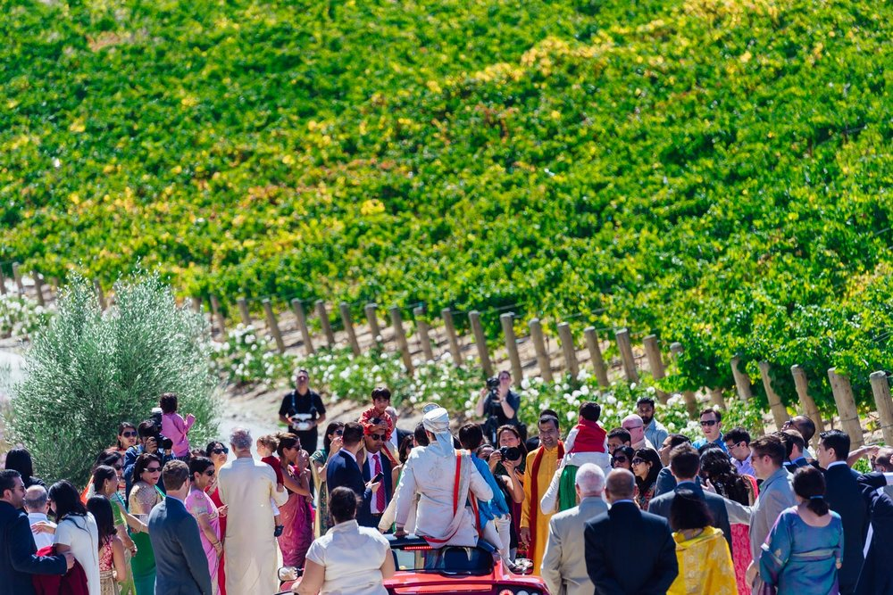baraat at Nella Terra Cellars