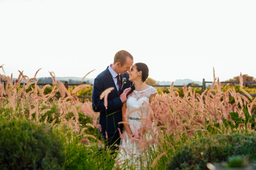 California Winery wedding at De Loach Santa Rosa