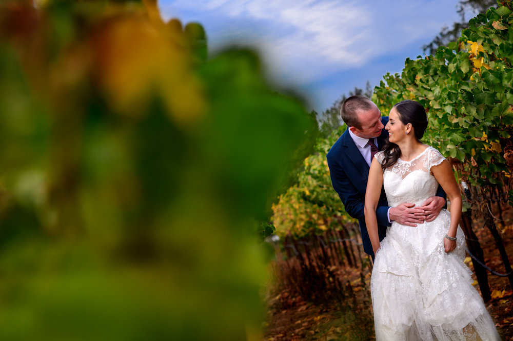 Santa Rosa winery wedding