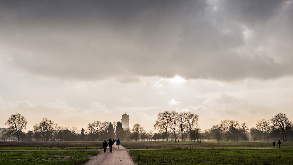 Hyde Park in London on a January afternoon
